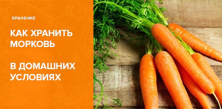 Как хранить морковь в домашних условиях: 10 способов