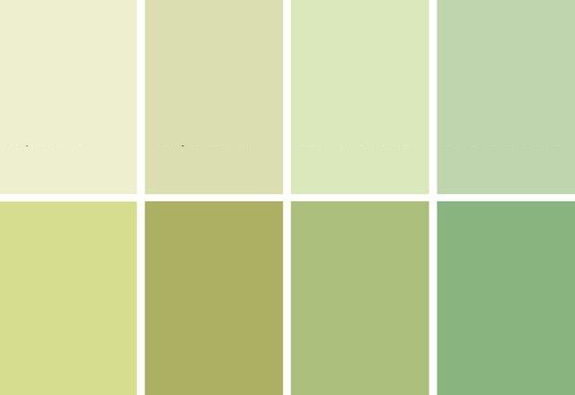 цвет оливковый фото