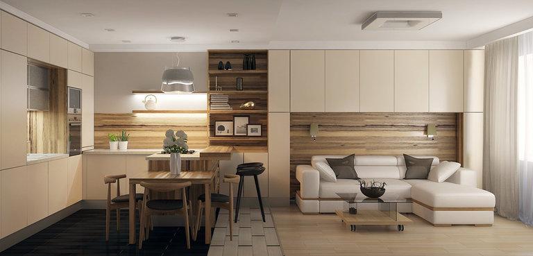 кухня-гостиная 22 кв.м дизайн фото