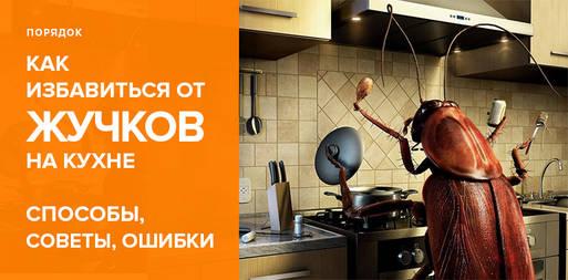 10 способов как можно избавиться от жучков на кухне (в крупе, шкафу, муке)